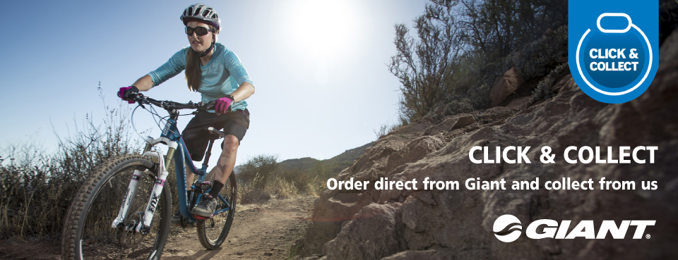 41c6601ed46 Giant Click and Collect with Phoenix Cycles